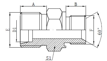 Cittive Seal Adapter Fittings